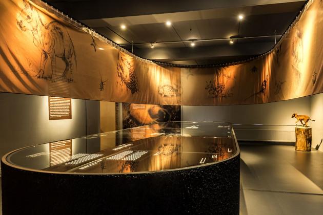 tentoonstellingsontwerper natuurmuseum _ 08b