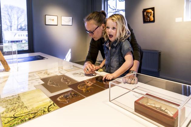 tentoonstellingsontwerper natuurmuseum _ 14