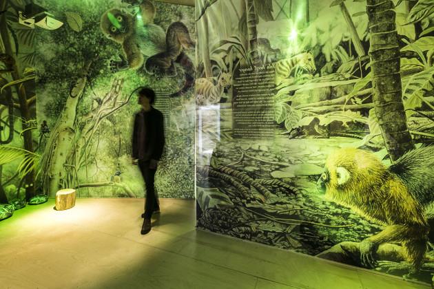 tentoonstellingsontwerper natuurmuseum _ 01