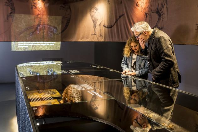 tentoonstellingsontwerper natuurmuseum _ 10