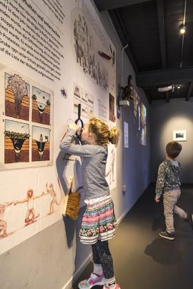 tentoonstellingsontwerper natuurmuseum _ 12
