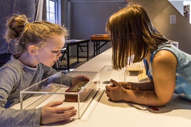 tentoonstellingsontwerper natuurmuseum _ 13